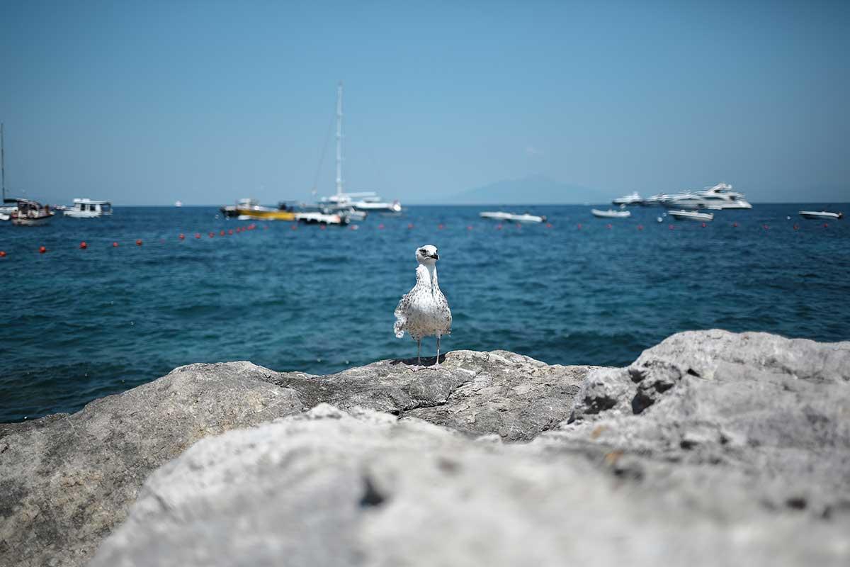 capri-landscape-italy