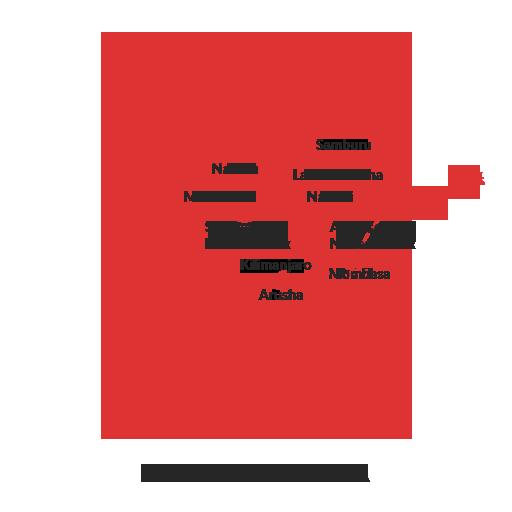 Masai Mara and Mt.Kilimanjaro