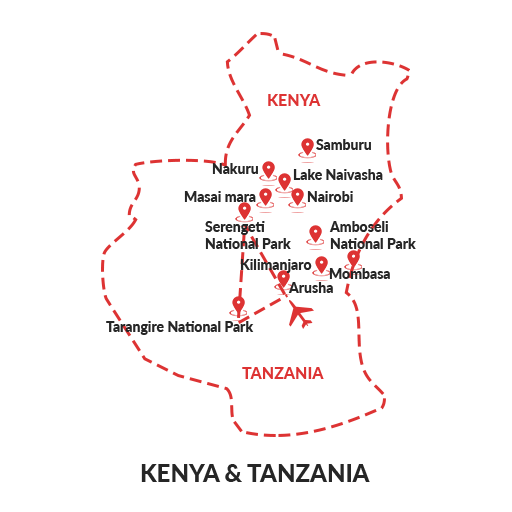 Safari at the Serengeti